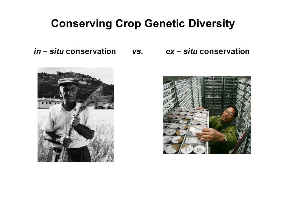 Global ex situ conservation From Dulloo et al. 2010