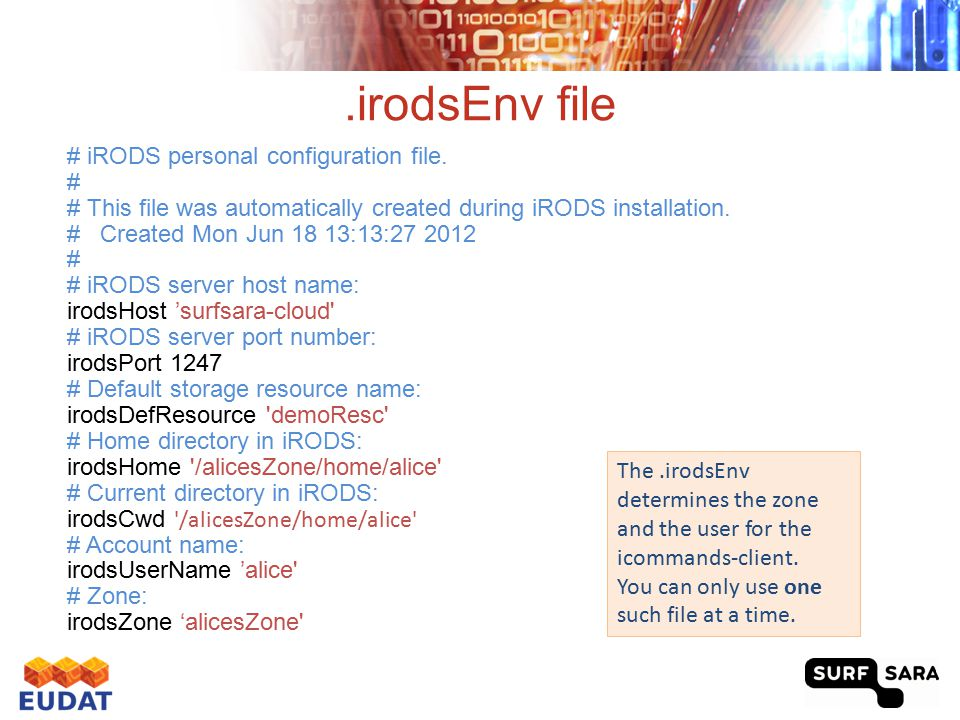 iRODS i-commands Documentation: https://wiki.irods.org/index.php/icommands (we don't provide a exhaustive list of i-commands)