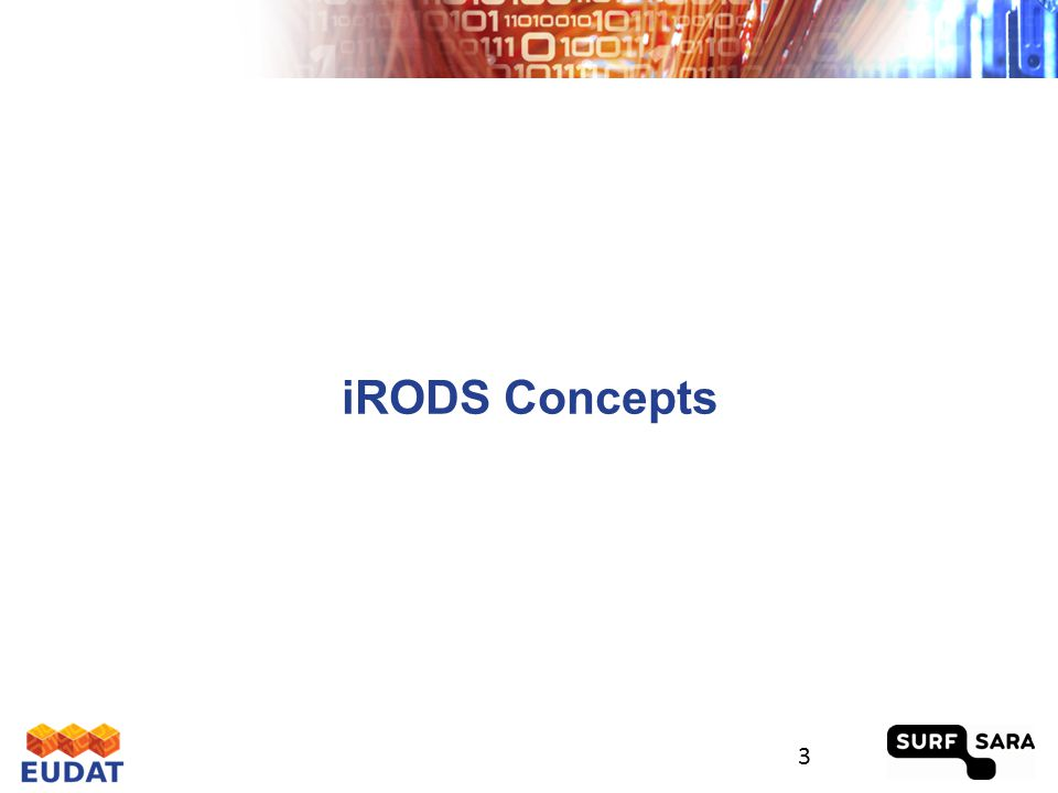 What is iRODS? 4