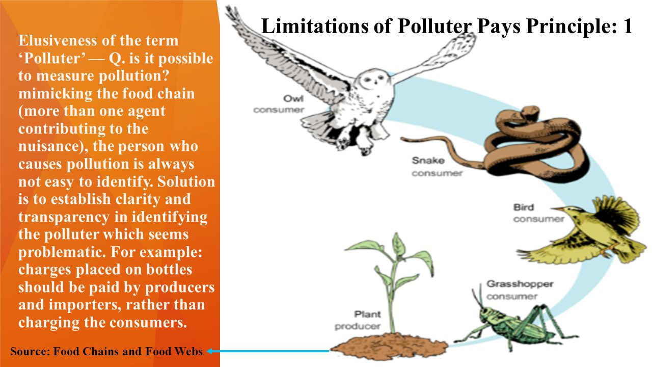 Limitations of Polluter Pays Principle 2 2.Elusiveness of the term 'Pay'—After identifying the polluter, how much should he pay.
