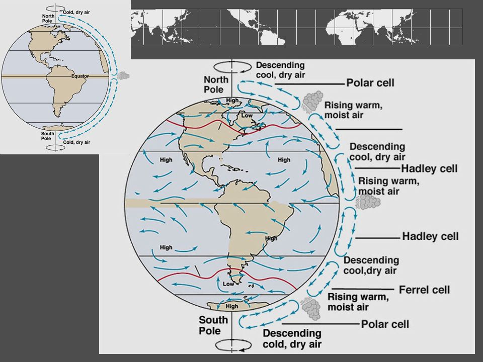 Wind-driven Ocean Circulation Surface ocean circulation mixed layer above top 100 m controlled by winds + coriolis Overhead wind patterns Wind blows against surface- friction sets water into motion Continents interfere with the winds and redirect airflow Result- circulation cells within each ocean basin