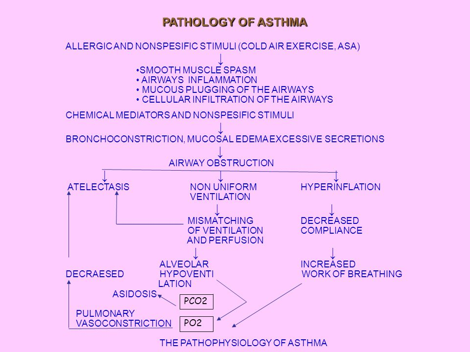 CLINICAL FINDINGS RECURRENT EPISODES OF COUGH DYSPNEA WHEEZING - PAROXYSMAL COUGHING AND INDUCES VOMITING - SHORTNESS OF BREATH - A FEELING OF TIGHTNESS IN THE CHEST - POOR EXERCISE TOLERANCE - RECURRENT CHEST COLDS OR PNEUMONIA