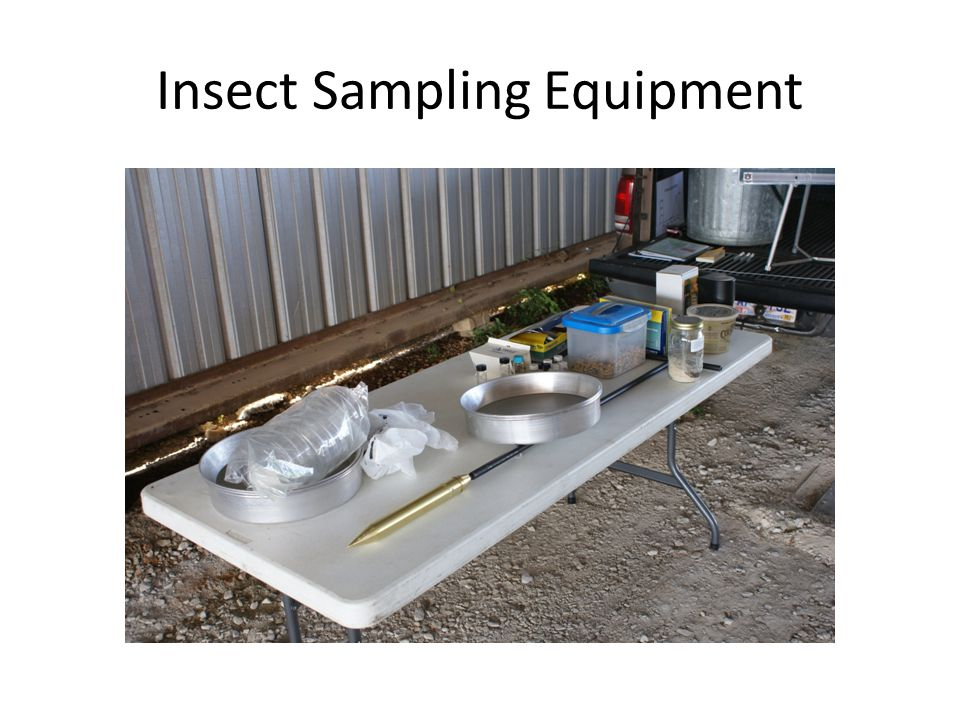 Types of Insect Traps