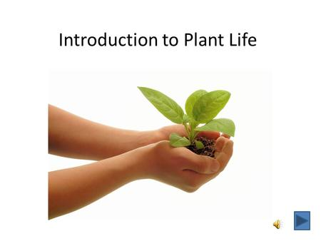 Introduction to Plant Life With this slide show you will: