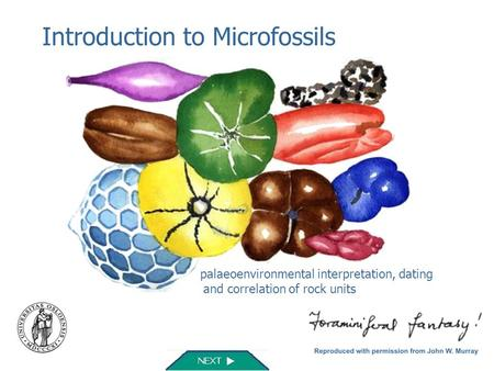 Introduction to Microfossils palaeoenvironmental interpretation, dating and correlation of rock units.