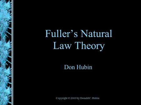 Copyright © 2003 by Donald C. Hubin Fullers Natural Law Theory Don Hubin.