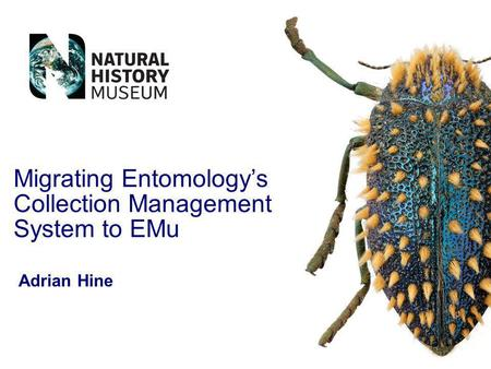 Migrating Entomologys Collection Management System to EMu Adrian Hine.