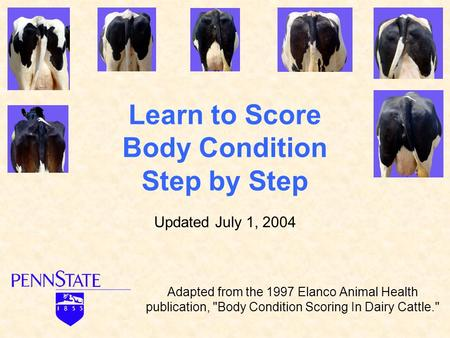 Learn to Score Body Condition Step by Step