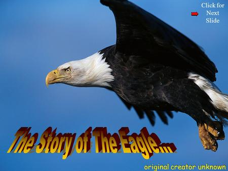 Click for Next Slide The eagle has the longest life-span of its species next.