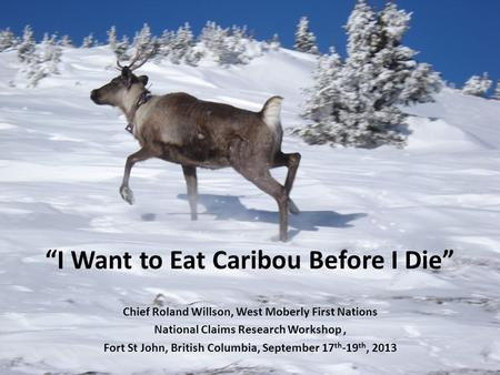 I Want to Eat Caribou Before I Die Chief Roland Willson, West Moberly First Nations National Claims Research Workshop, Fort St John, British Columbia,