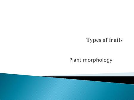 Types of fruits Plant morphology.