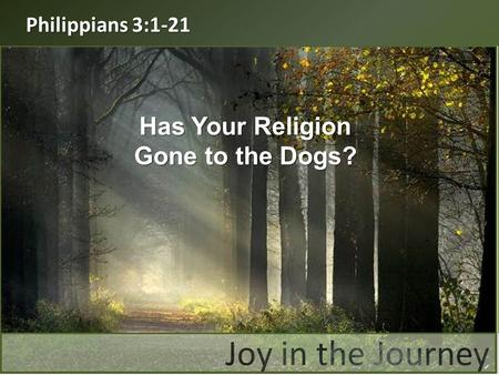 Philippians 3:1-21 Has Your Religion Gone to the Dogs?