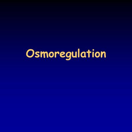 Osmoregulation. Ionic and osmotic balance in multicellular organisms the interstitial fluid is the internal environment – composition resembles that of.