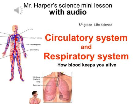 5 th grade Life science 8/08 Mr. Harpers science mini lesson with audio Circulatory system and Respiratory system How blood keeps you alive.
