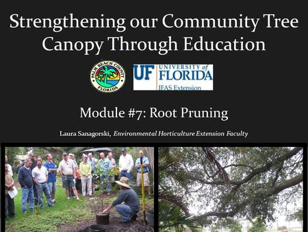 Strengthening our Community Tree Canopy Through Education Module #7: Root Pruning Laura Sanagorski, Environmental Horticulture Extension Faculty.