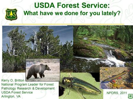 USDA Forest Service: What have we done for you lately? Kerry O. Britton National Program Leader for Forest Pathology Research & Development USDA Forest.