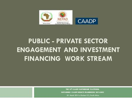 PUBLIC - PRIVATE SECTOR ENGAGEMENT AND INVESTMENT FINANCING WORK STREAM THE 10 th CAADP PARTNERSHIP PLATFORM: SUSTAINING CAADP RESULTS FRAMEWORK 2013-2023.