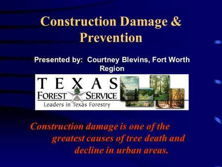 Construction Damage & Prevention Construction damage is one of the greatest causes of tree death and decline in urban areas. Presented by: Courtney Blevins,