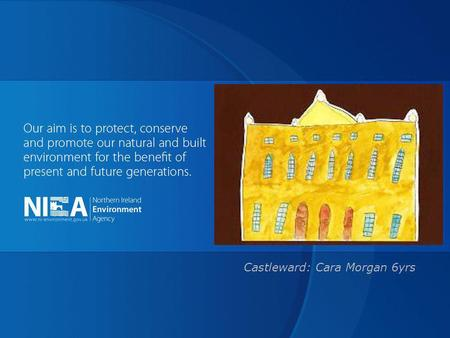 Castleward: Cara Morgan 6yrs. The Listed Building owners forum Keeping the weather out Dermot Mac Randal.