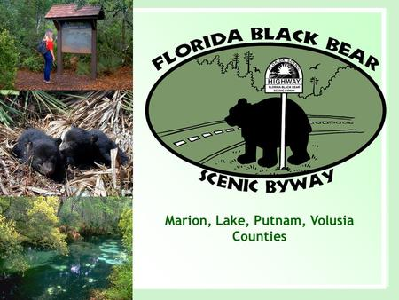 Marion, Lake, Putnam, Volusia Counties. Where are Floridas Scenic Byways? www.dot.state.fl.us/emo/scenichwy/designated.htm.
