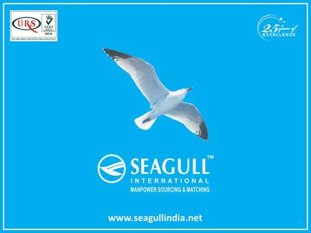 Www.seagullindia.net. Seagull International is a ISO 9001-2008 certified global Human Resource Consulting organization based in Mumbai, India having braches.