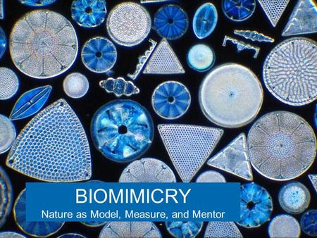 BIOMIMICRY Nature as Model, Measure, and Mentor. BI-O-MIM-IC-RY (From the Greek bios, life, and mimesis, imitation) Nature as model. Biomimicry is a new.