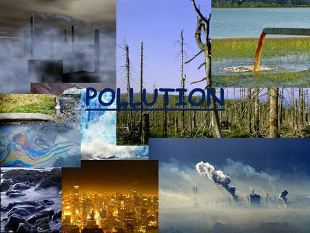 why is our pollution bad Lets find out how harmful the environment can be when we pollute our lands and soils : effects of land pollution very bad smell and odour in the town.