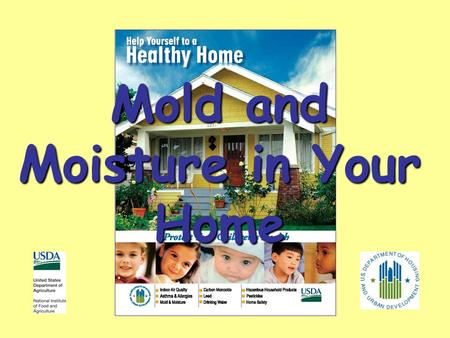 Mold and Moisture in Your Home. Should You Be Concerned? Mold growth is an indication of excess moisture Molds can affect your health Excess moisture.