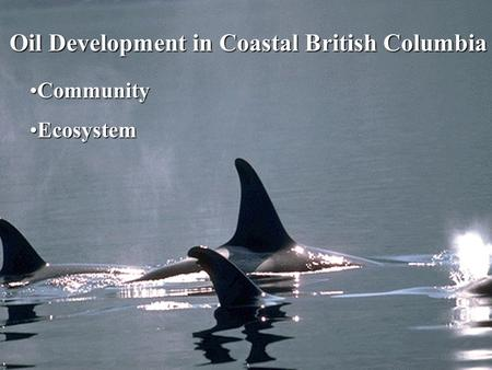 Oil Development in Coastal British Columbia CommunityCommunity EcosystemEcosystem.