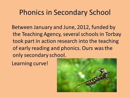 Phonics in Secondary School Between January and June, 2012, funded by the Teaching Agency, several schools in Torbay took part in action research into.