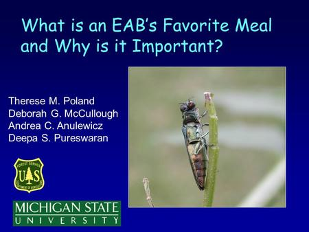 What is an EABs Favorite Meal and Why is it Important? Therese M. Poland Deborah G. McCullough Andrea C. Anulewicz Deepa S. Pureswaran.