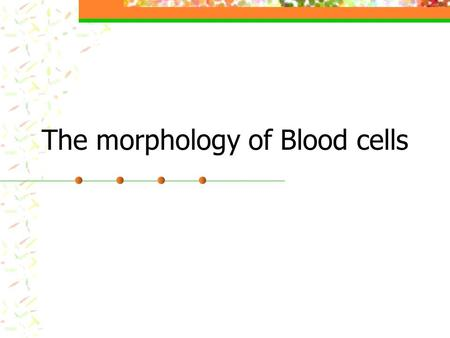 The morphology of Blood cells