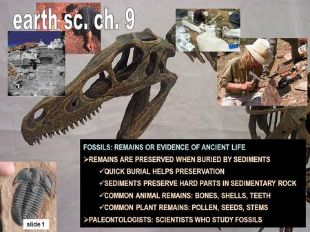 FOSSILS: REMAINS OR EVIDENCE OF ANCIENT LIFE REMAINS ARE PRESERVED WHEN BURIED BY SEDIMENTS QUICK BURIAL HELPS PRESERVATION SEDIMENTS PRESERVE HARD PARTS.