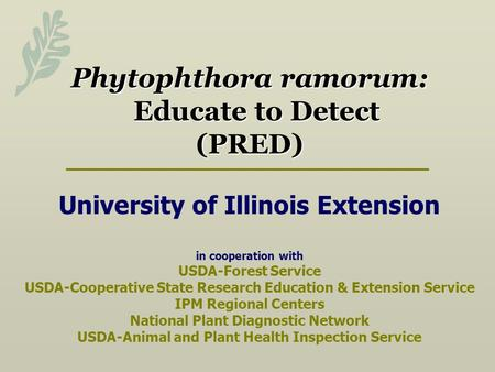 Phytophthora ramorum: Educate to Detect (PRED) Phytophthora ramorum: Educate to Detect (PRED) University of Illinois Extension in cooperation with USDA-Forest.
