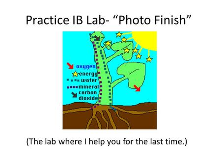 Practice IB Lab- Photo Finish (The lab where I help you for the last time.)
