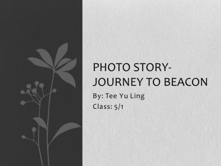 By: Tee Yu Ling Class: 5/1 PHOTO STORY- JOURNEY TO BEACON.