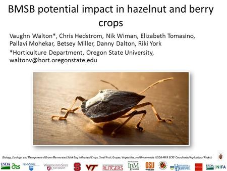 Biology, Ecology, and Management of Brown Marmorated Stink Bug in Orchard Crops, Small Fruit, Grapes, Vegetables, and Ornamentals USDA-NIFA SCRI Coordinated.