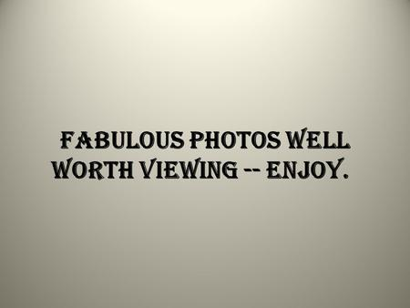 Fabulous photos well worth viewing -- enjoy.. Anheuser-Busch is on the phone and they want to talk to you...