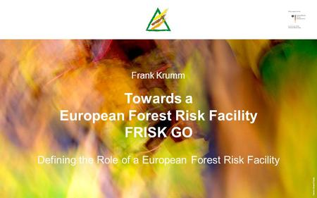 Frank Krumm Towards a European Forest Risk Facility FRISK GO Defining the Role of a European Forest Risk Facility.