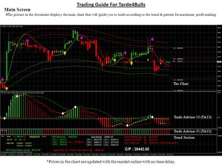 Trading Guide For Tarde4Bulls Main Screen The picture in the document displays the main chart that will guide you to trade according to the trend & pattern.