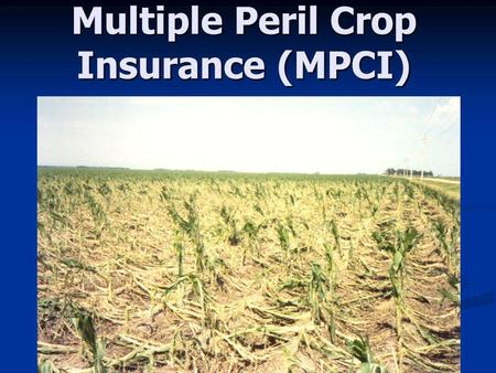 Multiple Peril Crop Insurance (MPCI). Actual Production History (APH)Yield Insurance APH yield is average of past 10 years. APH yield is average of past.