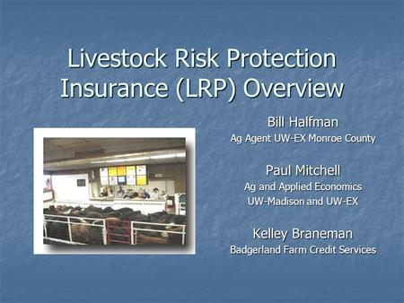 Livestock Risk Protection Insurance (LRP) Overview Bill Halfman Ag Agent UW-EX Monroe County Paul Mitchell Ag and Applied Economics UW-Madison and UW-EX.