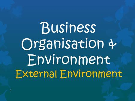 1 Business Organisation & Environment External Environment.
