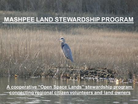 MASHPEE LAND STEWARDSHIP PROGRAM A cooperative Open Space Lands stewardship program connecting regional citizen volunteers and land owners.