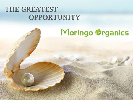 THE GREATEST OPPORTUNITY. PRESENTS Wings to fly COMPENSATION PLAN WARNING: © 2012 Moringo Organics Inc,Copy Rights Reserved,Contains Legally privileged.