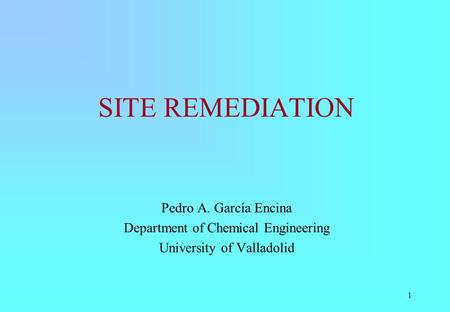 1 SITE REMEDIATION Pedro A. García Encina Department of Chemical Engineering University of Valladolid.