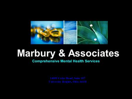 Comprehensive Mental Health Services Marbury & Associates 14055 Cedar Road, Suite 107 University Heights, Ohio 44118.