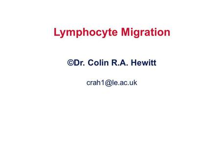 Lymphocyte Migration ©Dr. Colin R.A. Hewitt