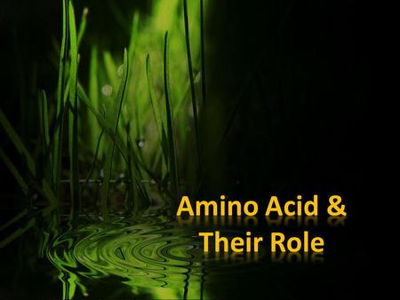 AMINO ACID Amino acids are critical to life, and have many functions in metabolism. Amino acids are organic compounds that combine to form proteins. Our.