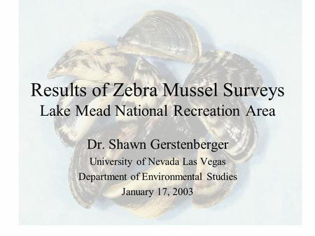 Results of Zebra Mussel Surveys Lake Mead National Recreation Area Dr. Shawn Gerstenberger University of Nevada Las Vegas Department of Environmental Studies.